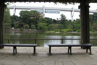 千葉公園のベンチ